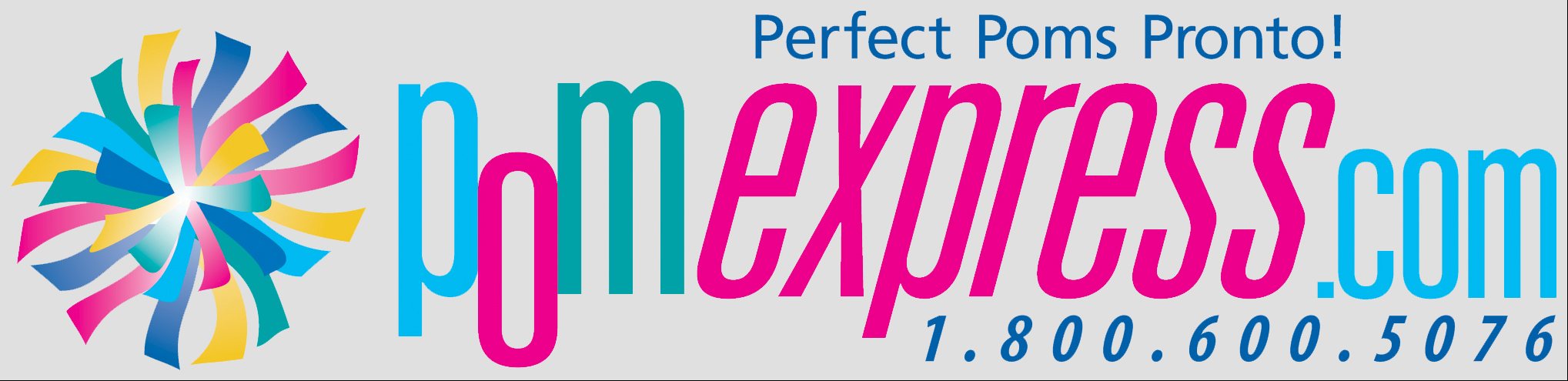pom express logo with e0e0e0 background